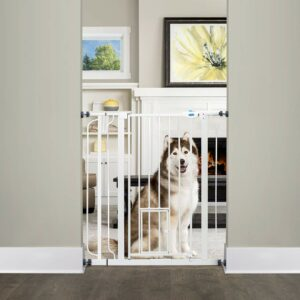 Carlson Extra Tall Walk Through Pet Gate with Small Pet Door