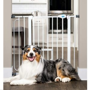 Carlson Extra Wide Walk Through Pet Gate Best Baby Gates With Pet Doors